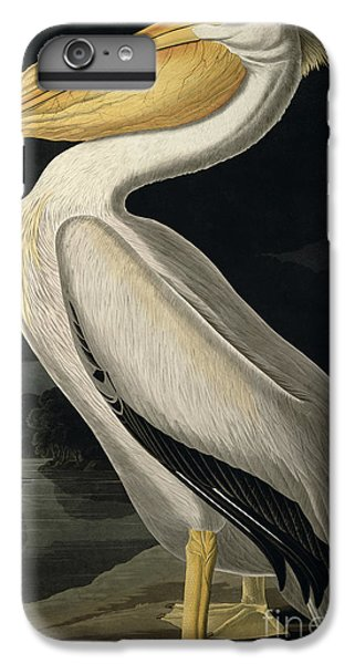 American White Pelican IPhone 6s Plus Case by John James Audubon