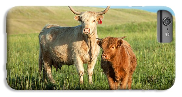 Big Horn, Little Horn IPhone 6s Plus Case by Todd Klassy