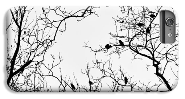Branches And Birds IPhone 6s Plus Case by Sandy Taylor