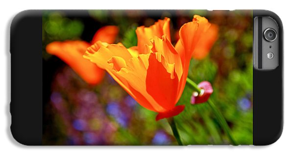 Brilliant Spring Poppies IPhone 6s Plus Case by Rona Black