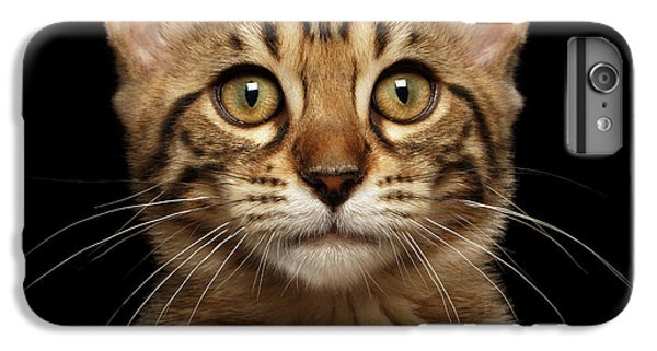 Closeup Portrait Of Bengal Kitty Isolated Black Background IPhone 6s Plus Case by Sergey Taran