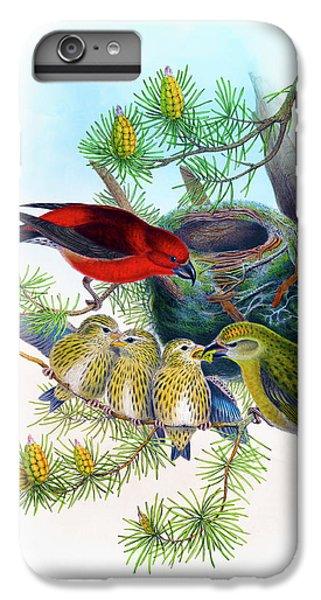 Common Crossbill Antique Bird Print John Gould Hc Richter Birds Of Great Britain  IPhone 6s Plus Case by John Gould - HC Richter