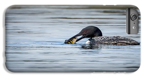 Common Loon IPhone 6s Plus Case by Bill Wakeley