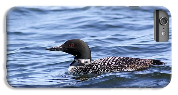 Common Loon IPhone 6s Plus Case by Teresa Zieba