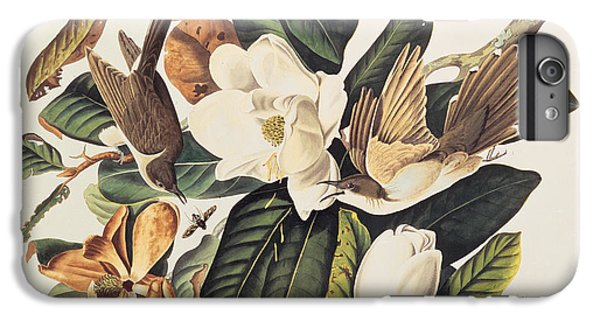 Cuckoo On Magnolia Grandiflora IPhone 6s Plus Case by John James Audubon