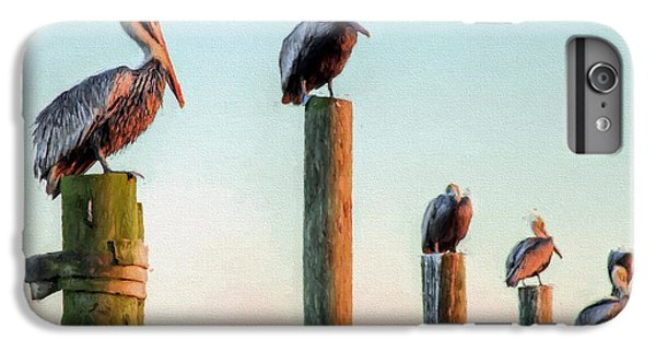 Destin Pelicans-the Peanut Gallery IPhone 6s Plus Case by JC Findley