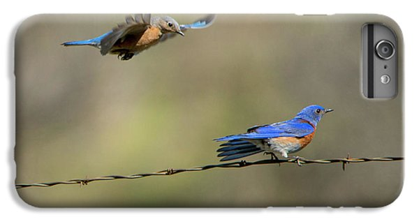 Flying To You IPhone 6s Plus Case by Mike Dawson
