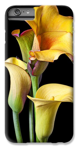 Four Calla Lilies IPhone 6s Plus Case by Garry Gay