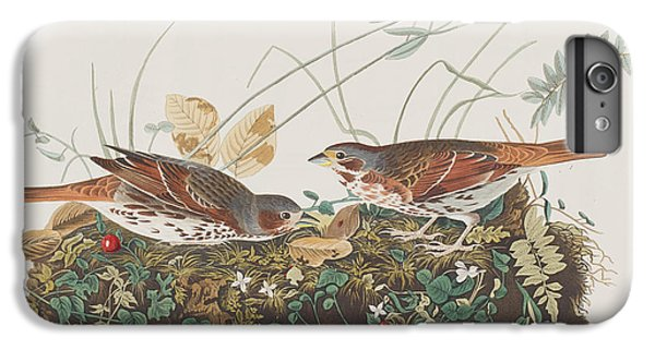 Fox Sparrow IPhone 6s Plus Case by John James Audubon