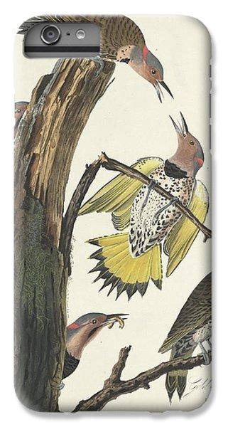 Gold-winged Woodpecker IPhone 6s Plus Case by John James Audubon