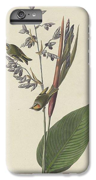 Golden-crested Wren IPhone 6s Plus Case by John James Audubon