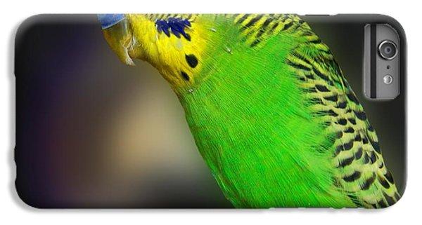 Green Parakeet Portrait IPhone 6s Plus Case by Jai Johnson