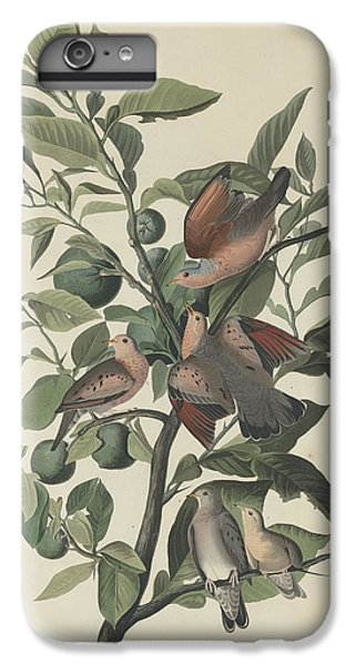 Ground Dove IPhone 6s Plus Case by John James Audubon