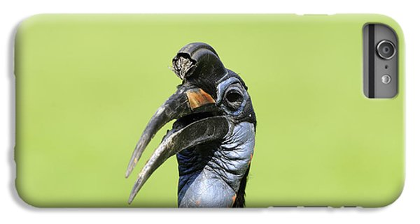 Ground Hornbill IPhone 6s Plus Case by David & Micha Sheldon