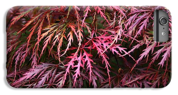 Japanese Maple IPhone 6s Plus Case by Rona Black
