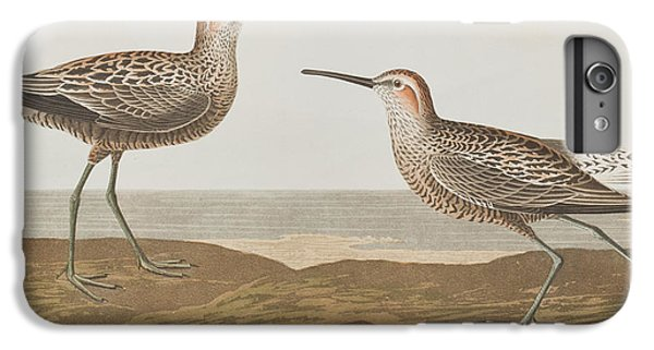 Long-legged Sandpiper IPhone 6s Plus Case by John James Audubon