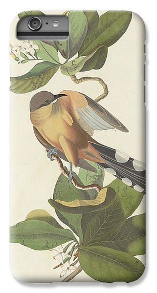 Mangrove Cuckoo IPhone 6s Plus Case by John James Audubon