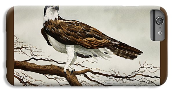Osprey Sea Hawk IPhone 6s Plus Case by James Williamson