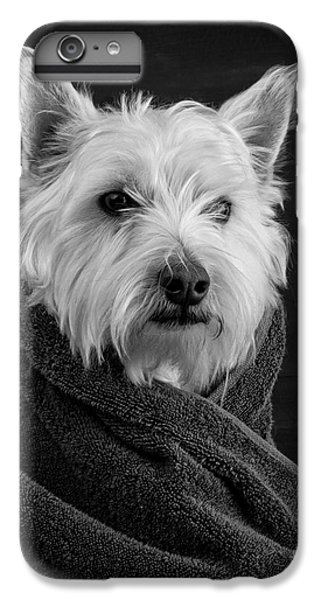 Portrait Of A Westie Dog IPhone 6s Plus Case by Edward Fielding