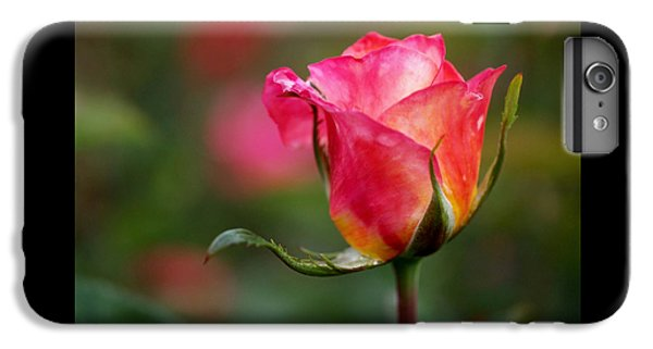 Rosebud IPhone 6s Plus Case by Rona Black
