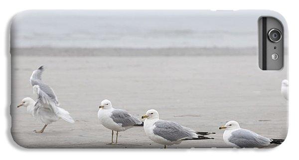 Seagulls On Foggy Beach IPhone 6s Plus Case by Elena Elisseeva