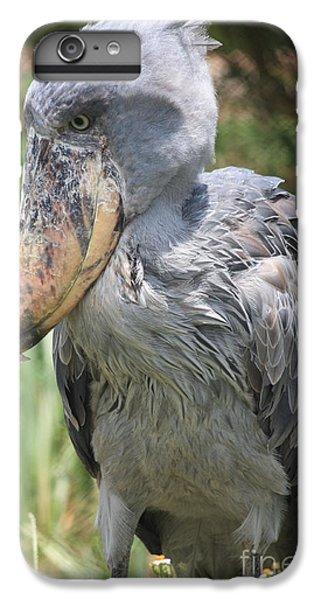 Shoebill Stork IPhone 6s Plus Case by Carol Groenen