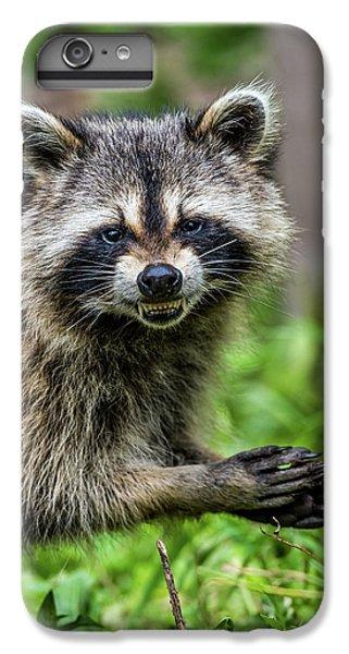 Smiling Raccoon IPhone 6s Plus Case by Paul Freidlund