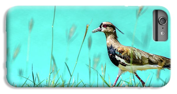 Southern Lapwing IPhone 6s Plus Case by Randy Scherkenbach