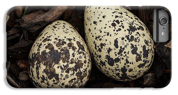Speckled Killdeer Eggs By Jean Noren IPhone 6s Plus Case by Jean Noren