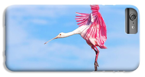 Spoonbill Ballet IPhone 6s Plus Case by Mark Andrew Thomas