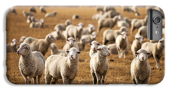 Standing Out In The Herd IPhone 6s Plus Case by Todd Klassy