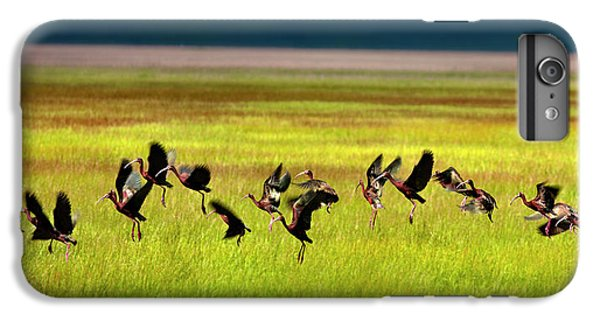Take Off IPhone 6s Plus Case by Leland D Howard