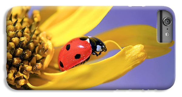 The End IPhone 6s Plus Case by Donna Kennedy