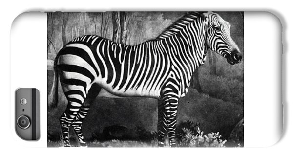 The Zebra IPhone 6s Plus Case by George Stubbs