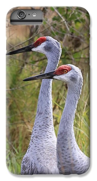 Two Sandhills In Green IPhone 6s Plus Case by Carol Groenen