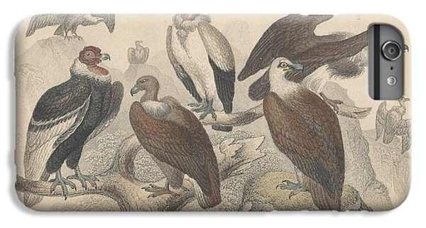 Vultures IPhone 6s Plus Case by Oliver Goldsmith
