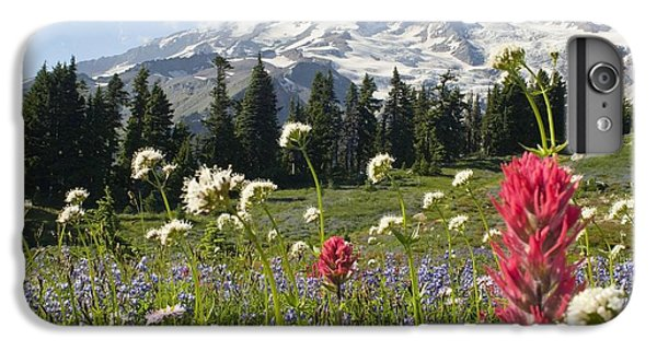 Wildflowers In Mount Rainier National IPhone 6s Plus Case by Dan Sherwood