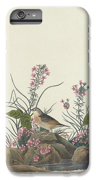 Yellow-winged Sparrow IPhone 6s Plus Case by John James Audubon