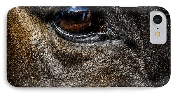 Bright Eyes - Horse Portrait IPhone Case by Holly Martin