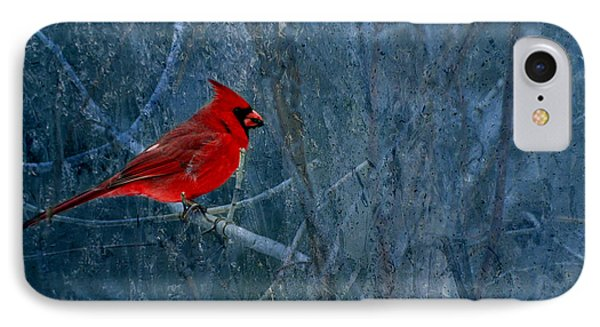 Northern Cardinal IPhone Case by Thomas Young
