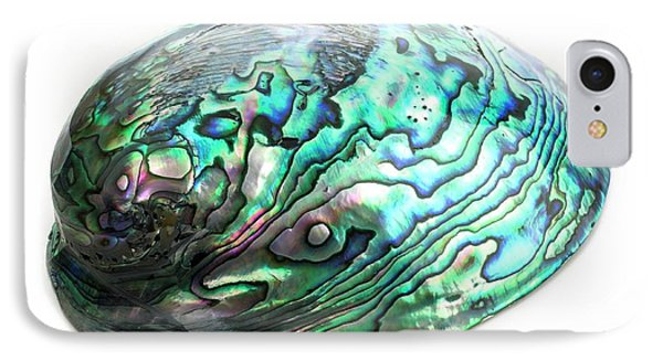 Abalone Shell IPhone Case by Science Photo Library