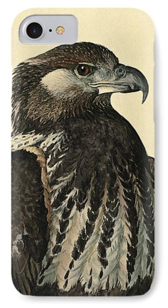 African Sea Eagle IPhone Case by Louis Agassiz Fuertes