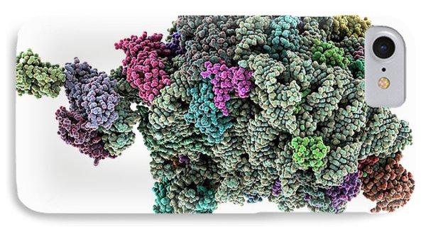 Archaeon Ribosome Subunit IPhone Case by Laguna Design