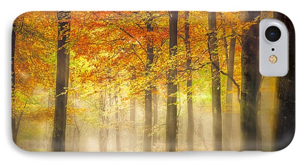 Autumn Gold IPhone Case by Ian Hufton