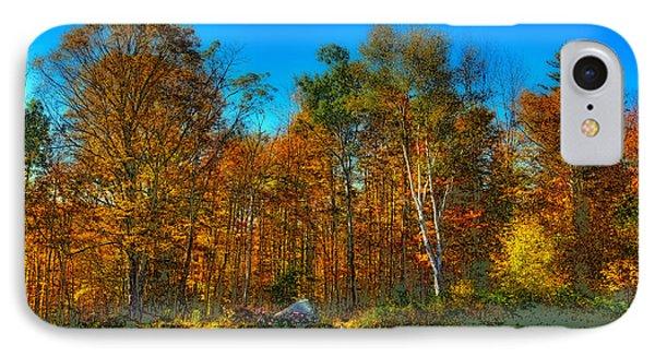 Autumn Landscape IPhone Case by David Patterson