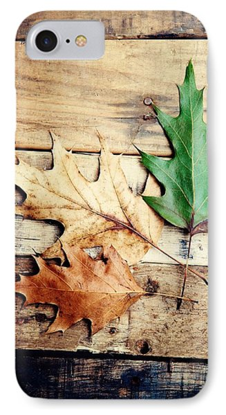 Autumn Leaves Ablaze With Color IPhone Case by Kim Fearheiley