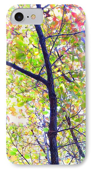 Autumn Leaves Phone Case by Scott Cameron