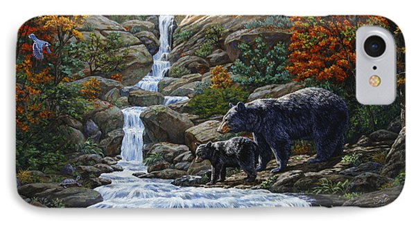 Black Bear Falls IPhone Case by Crista Forest
