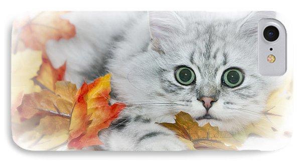 British Longhair Cat IPhone Case by Melanie Viola