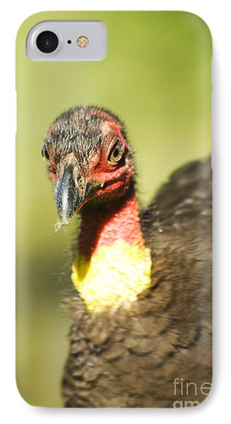 Brush Scrub Turkey IPhone Case by Jorgo Photography - Wall Art Gallery